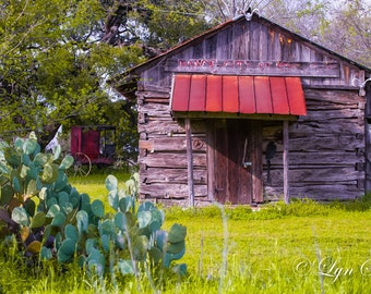 Texas Stagecoach, cabin, Cactus, Landscape photography, Cabin, Texas, Hill Country ,Western, fine art print