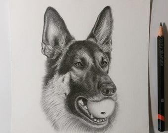 "6"" x 6"" Dog Pencil Portraits & Gift Cards ~ Hand-Drawn"