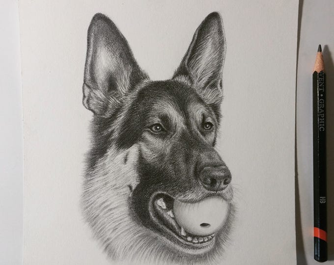 "Featured listing image: 6"" x 6"" Dog Pencil Portraits & Gift Cards ~ Hand-Drawn"
