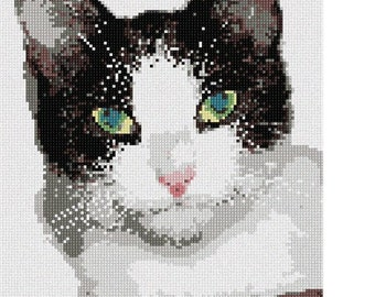 Needlepoint Kit or Canvas: Cat Eyes