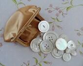 Vintage Kiss  Clasp Coinpurse w/ MOP Buttons