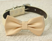 Champagne Dog Bow Tie Collar, Country Rustic wedding, pet wedding accessory, Dog lovers, cream, Dog collar