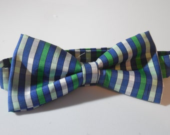 Blue and Green Adjustable Bow Tie