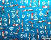 cat in the hat teepee