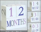 FLASH SALE Baby Age Blocks - Photo Prop - 0 - 43 Weeks, Months, Years and Grade