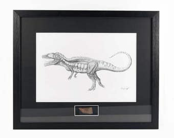 Carcharodontosaurus Fossil Tooth With Signed Artist Print