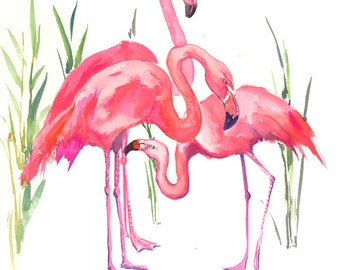 Flamingos pink flamingos, original watercolor painting 14 x 11 in