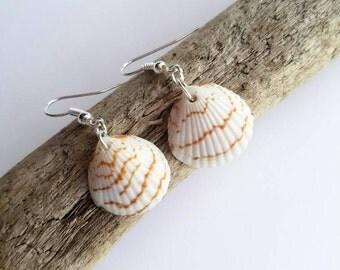 Custom Venus Seashells Earrings - From Florida - Beach Jewelry-  Gifts For Her