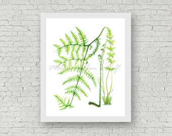 "Botanical painting, art print, mixed media, ""Fern"""