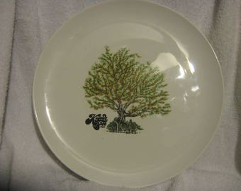KAPOK TREE INN Dinner Plate Corning Pyroceram Very Very Rare