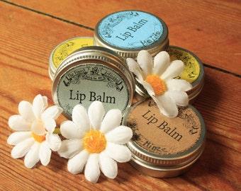 Odd Polly's lip balm 15 flavors!  15 ml, lip balm, natural cosmetics, Cacaobutter, Shea butter