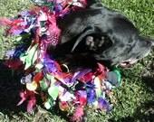 Diana's Mardi Gras collars!!!!