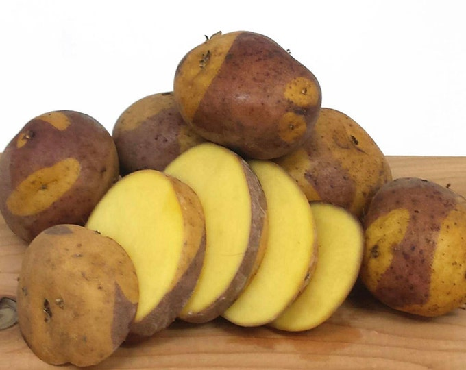 Masquerade Seed Potato 5 Lbs. Certified Organic Purple and Yellow Seed Potatoes- Spring Shipping Non-GMO