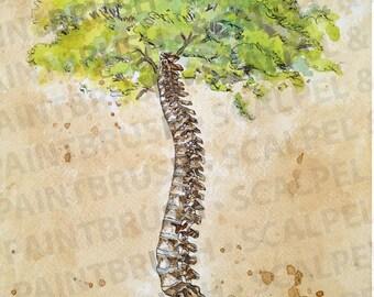 "16""x20"" Arbor Vitae, Tree of Life - Spine, tree, creative anatomy, illustration, chiropractic art, watercolor, print"