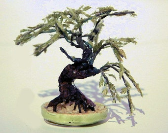 Bonsai Willow