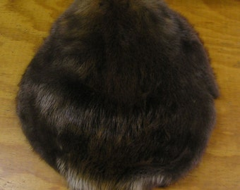 Wyoming Beaver Pelt