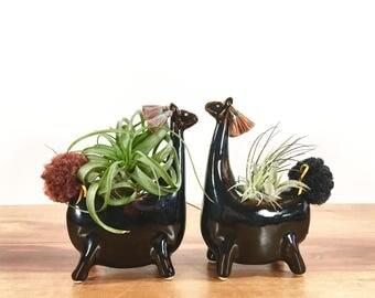 llama vase / air plant vase / chocolate gold brown temmoku