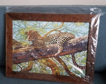 Completed Jigsaw Puzzles