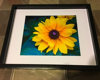 yellow, flower, fine art, Photo print