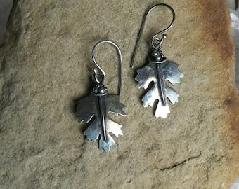 Sterling Silver Hawthorn Leaf earrings