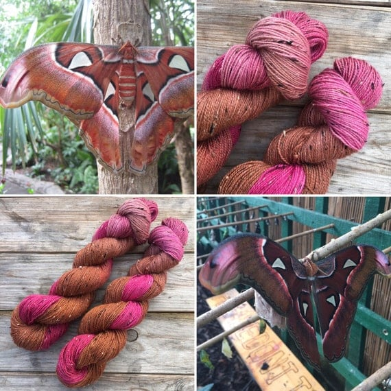 Giant Atlas Moth Donegal sock, indie dyed Bluefaced Leicester yarn