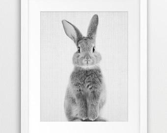 Rabbit Print, Nursery Animal Wall Art, Woodlands Animals Print, Cute Bunny Print, Black And White Photo, Kids Room Decor, Printable Art