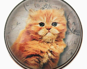 C0118  Ginger Cat Art Glass Print Chunk