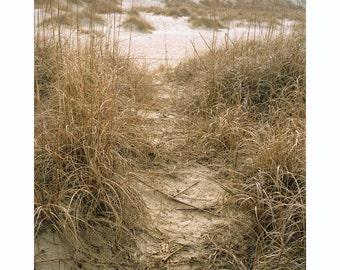 Beach Imprints (4)
