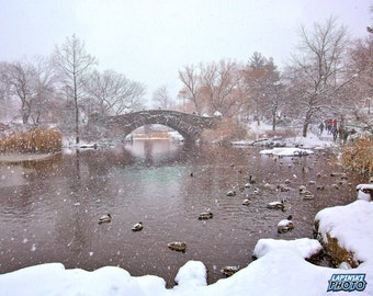 """Central Park New York City Photograph, Color Photography, NYC, Wall Art, Gapstow Bridge, Ducks, Snow Day, """"Winter At The Pond"""""""