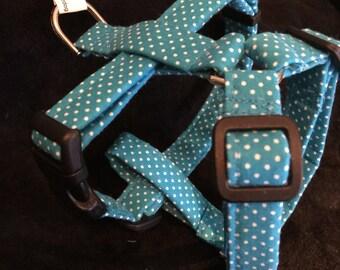 Really pretty blue small harness
