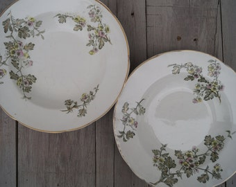 Soup Bowls (Set of 8) - T. Furnival & Sons - Hawthorn Style
