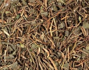 Squawvine Herb - Wildcrafted