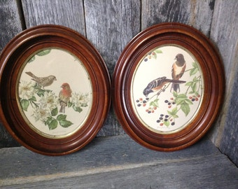 82 - Framed Pictures - Solid Wood -Vintage - Bird Prints - Chunky - Detailed - Natural Wood