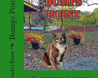 Bump's Point - Book