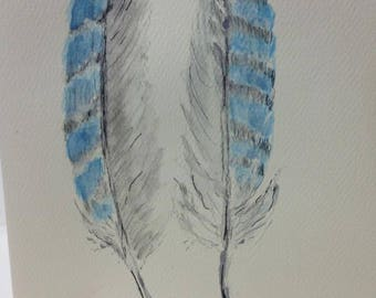Blue Jay Feathers Note Card