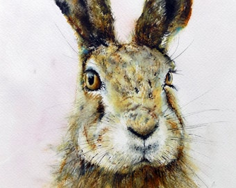 Hare Print of my Original Watercolour Hare are you listening Painting by Nancy Antoni A4 A3 watercolor