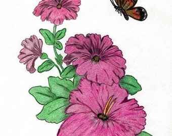 Original Art Drawing in Colored Pencils of Pink Petunias and Butterfly - Botanical Art