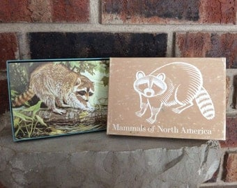 Vintage Mammals of North America / National Audubon Society Educational Cards / Free Shipping