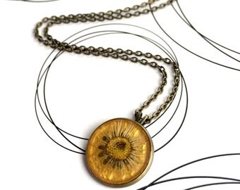 Pressed Daisy Necklace, Real Flower Pendant, Botanical Necklace, Ecologist Necklace, Natural Flower Necklace, Boho Chic Gift