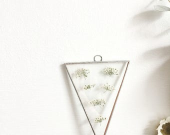 Real pressed flower handmade glass frame - cow parsley - Queen Anne's Lace - Botanical - Floral