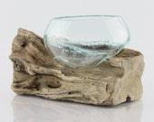 Gamal Root Vase - XS