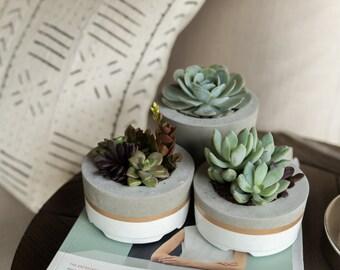 Concrete Planters, Set of 3, Three-tier Concrete Pots, Succulent Planters