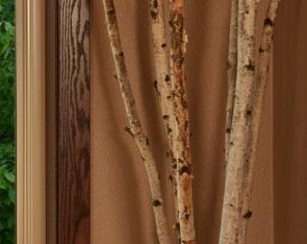 White birch tree   Etsy
