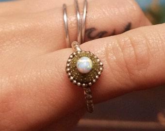 Opal Sea Urchin