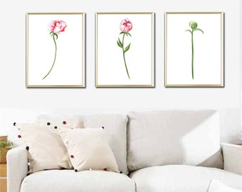 Watercolor botanical print set of 3 Pink peony paint printable flowers floral wall art decor room home kitchen 8 x 12   12 x 16