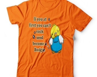 If at first you can't succeed become a budgie