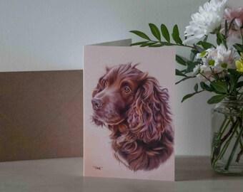 Spaniel Dog Greetings Card - Blank Inside
