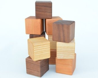 Wooden Toy Blocks - 12 Piece Wooden Blocks Building Set