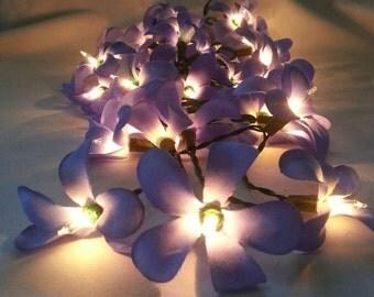 35 Flower Frangipani Bedroom Lighting, Living Room Lights, Hanging Lights, Ceiling Lights, Floral String Lights, Fairy Lights, Lamp Lights