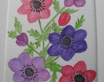 Anemones.